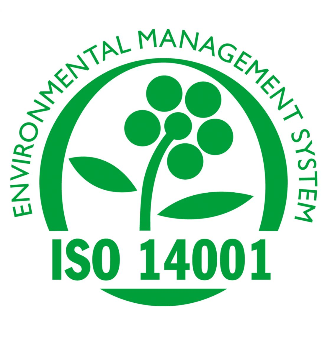 ISO 14001 - Management de l'Environnement au Maroc