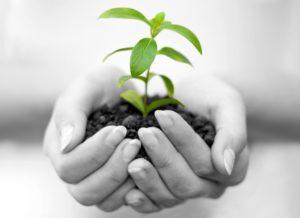 Proteger l environnement 17 44 Crop 300x218 - Conseil en Management de l'Environnement ISO 14001 au Maroc