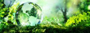 arton960 300x110 - Conseil en Management de l'Environnement ISO 14001 au Maroc