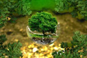 formation analyse environnementale au maroc