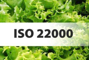 8eb622b5200ddfa1c4660d41f24770e4 300x201 - FORMATION ISO 22000:2018 AU MAROC